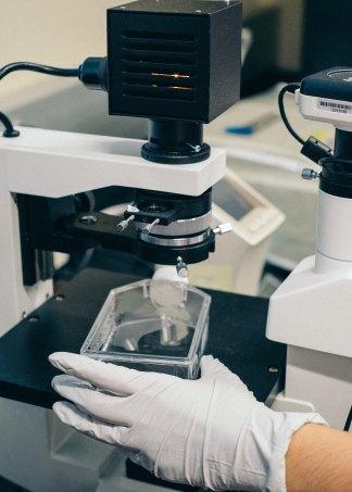 Biotech – Go Bold